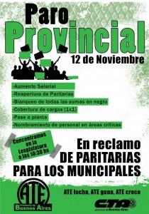 afiche paro-provincial-12-de-noviembre-COLOR-717x1024