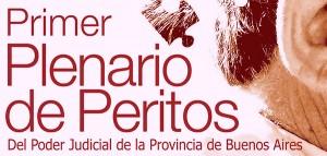 ajb Plenario-Peritos1